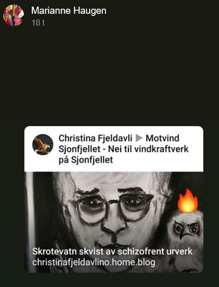 Bubo Bubo med flammehatt, Marianne Haugens FBhistorie